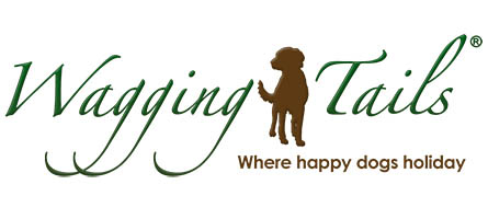 logo for Dog Boarding Franchise